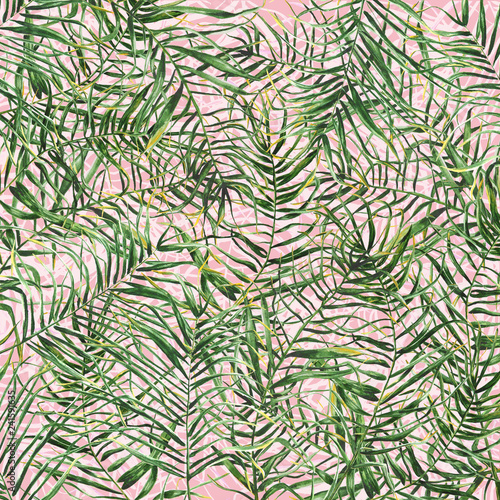 Recess Fitting Tropical Leaves Tropical palm leaves background.Hand drawn illustration.