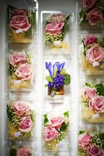 Close Up Of Flower Gift Boxes