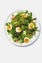 Egg With Salad Served On Plate On White Background