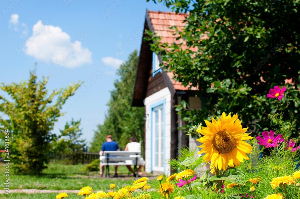 Fototapeta wypoczynek na wsi