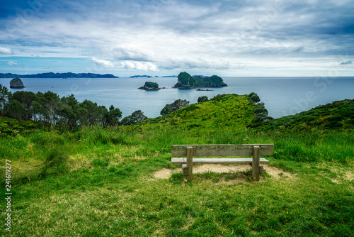 Foto op Canvas Cathedral Cove wooden bench in the grass at cathedral cove,coromandel,new zealand 1