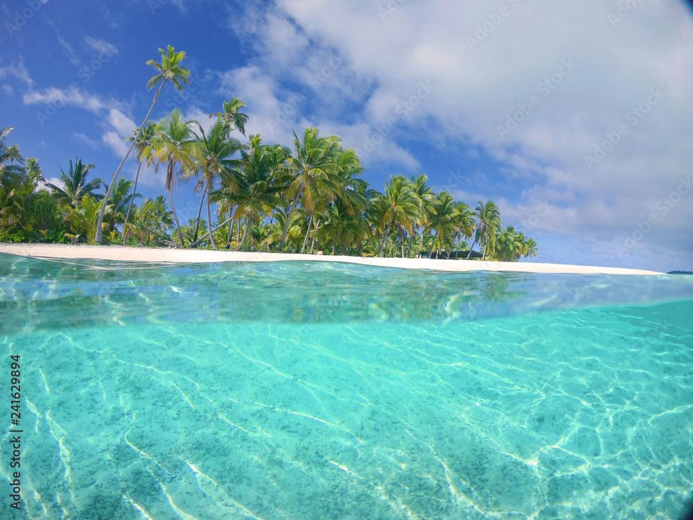 Fototapety, obrazy: HALF HALF: Vibrant bright green tropical vegetation covering the remote island.