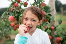 Portrait Of Girl Eating Apples On Farm