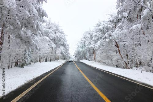 """Fotografía  제주 """"한라 산""""으로 가는 도로의 겨울 풍경이다"""
