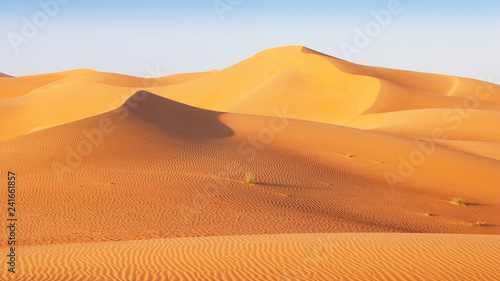 Canvas Prints Abu Dhabi Dune Landscape in the Empty Quarter