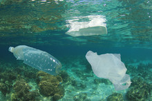 Plastic Bottles, Bags And Styr...