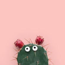 Funny Face Prickly Pear Cactus On A Pastel Pink Background, Prickly Pear Fruit, Opuntia Ficus-indica