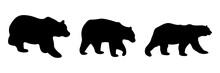 Silhouettes Of Three Bears In Various Positions