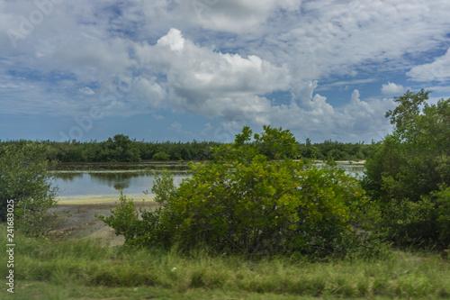 Fototapeta Karibische Landschaft obraz na płótnie