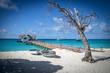 Maldives Landscape