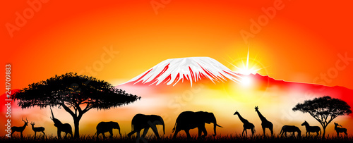 Fotomural  Savannah animals on the background of mount Kilimanjaro