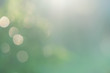 blurred green nature background with natural light with copy space.