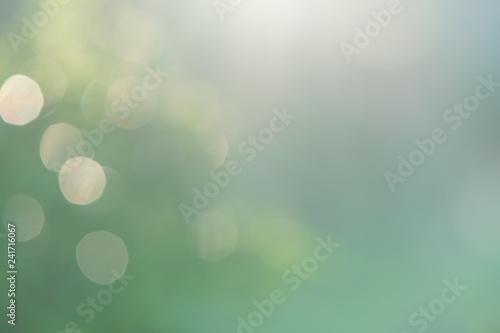 Fototapeta blurred green nature background with natural light with copy space. obraz na płótnie