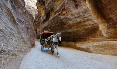 Fototapety, obrazy: Jordan. Canyon of Petra