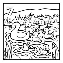 Coloring Book, Seven Ducks