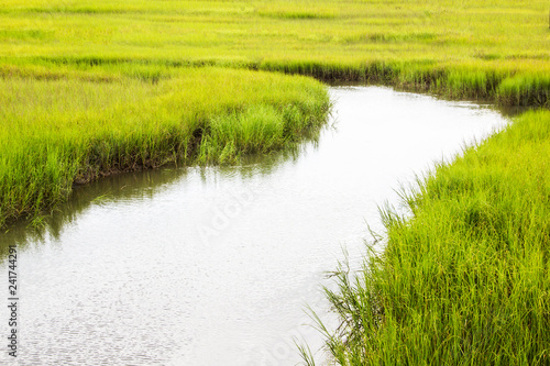 Stampa su Tela salt marsh at Shem Creek in Mount Pleasant South Carolina