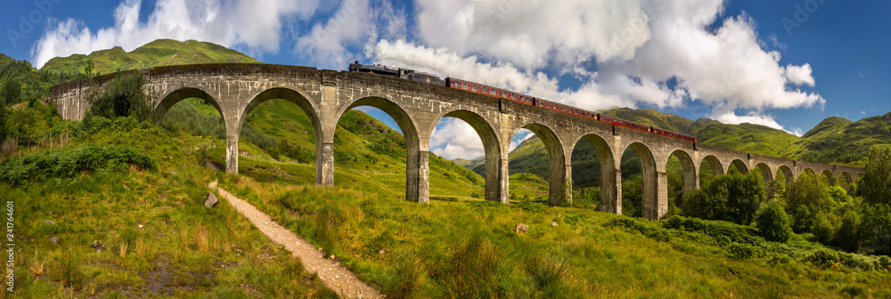 Fototapeta Steam train on the bridge