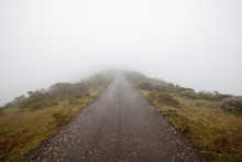 Marin Headlands, CA: A Road Trails Off Into The Fog.