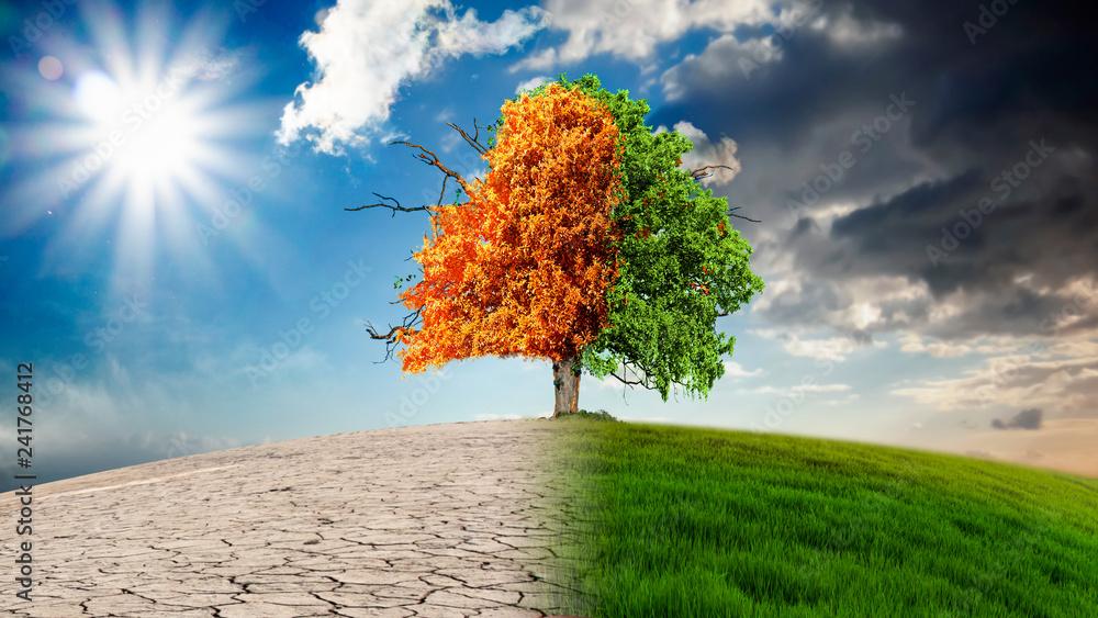 Fotografie, Obraz  Die Auswirkungen des Klimawandels.
