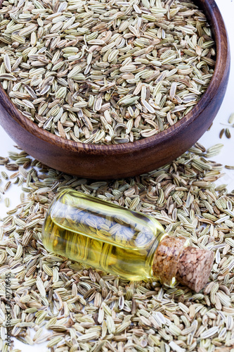 Foto op Canvas Kruiderij A bottle of fennel essential oil with fresh green fennel twigs and fennel seeds in the background