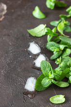 Fresh Garden Mint And Ice Cube...