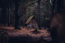 Verlassene Hütte In Wald Im Herbst