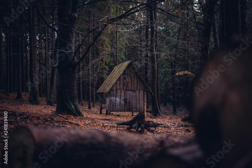 Canvastavla Verlassene Hütte in Wald im Herbst