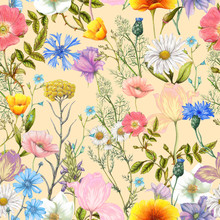 Seamless Pattern Of Summer Wildflowers