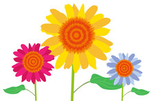 Flores De Color Amarillo Rosa ...