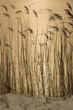 wysoka trawa zimą na tle stawu