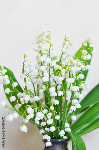 Fotografía  lily of the valley isolated on white background