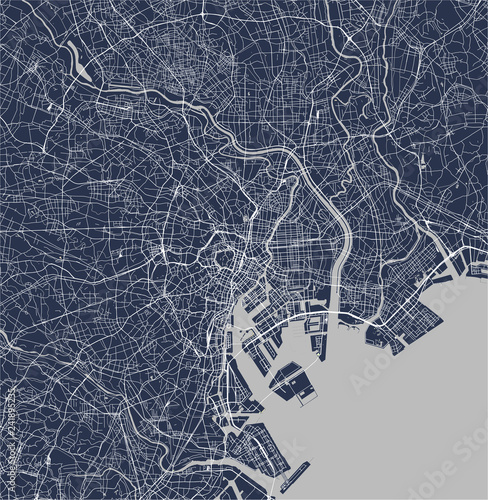 Photo map of the city of Tokyo, Kanto, Island Honshu, Japan