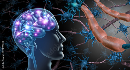 Plakaty Autyzm brain-nerve-cells