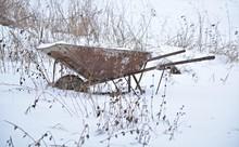 Old Rusty Wheelbarrow In The S...