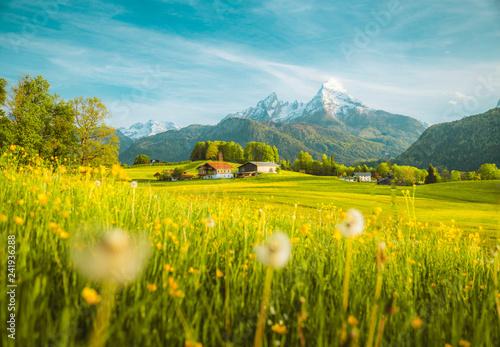 idylliczny-krajobraz-w-alpach-z-kwitnacymi-lakami-na-wiosne
