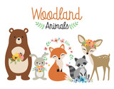 Fototapeta Fototapety na ścianę do pokoju dziecięcego - Cute woodland forest animals vector illustration including bear, bunny rabbit, fox, raccoon, and deer.