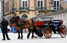 Traditional Horse-drawn Carria...