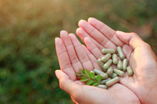 Herbal Medicine Powder On Girl...
