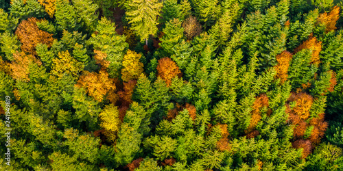 Zdjęcie XXL Widok z lotu ptaka, jesień las, Szwabski las, Baden Württemberg, Niemcy