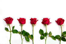 Red Roses Isolated On White Background - Image