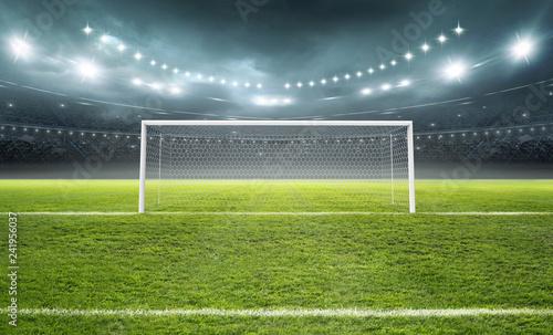 Vászonkép The imaginary soccer stadium and goalpost, 3d rendering