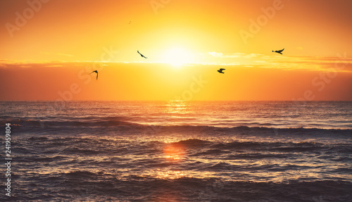 Poster Marron chocolat Beautiful sunrise over the sea