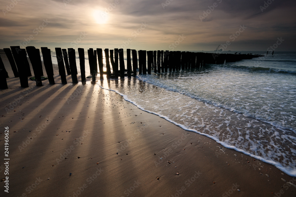 Fototapeta sunshine over old wooden breakwater on North sea coast