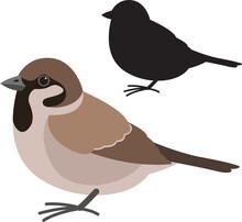 Sparrow Bird , Vector Illustration , Flat Style ,  Silhouette