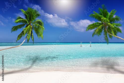 Fotografija Traumstrand in den Tropen mit türkisem Meer, Kokosnusspalmen und feinem Sand