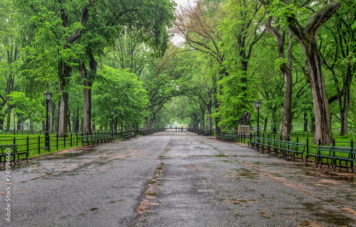 Central Park, New York City in spring Fototapete