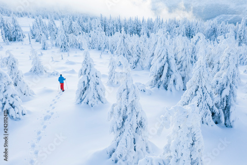 Aerial view of snowshoes walker in snowy forest