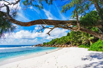 paradise beach on the seychelles, anse cocos, la digue 3