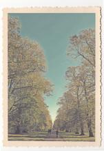Kensington Gardens - London - Vintage Photograph