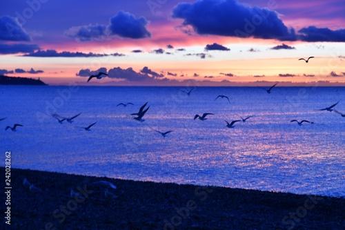 La pose en embrasure Bleu fonce Lever de soleil Nice envol de mouettes